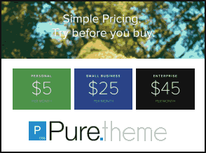 Preview of pure_theme